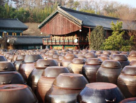 Temple ferments