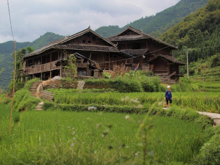 Sui. Quiet village, rare script